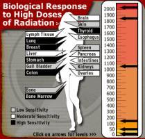 Radiation quote #2