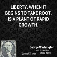 Rapid Growth quote #2