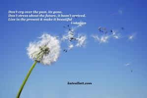 Rehabilitation quote #2