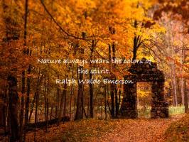 Scenery quote #2
