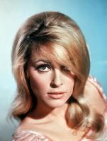Sharon Tate profile photo