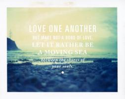 Shores quote #1