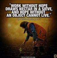 Sieve quote #2