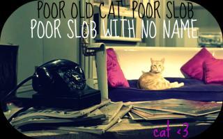 Slob quote #2