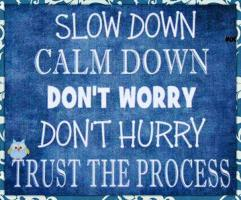 Slow Process quote