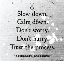 Slow Process quote #2