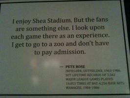 Stadiums quote #1