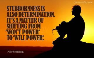 Stubbornness quote #2
