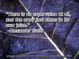 Supervision quote #2