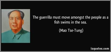 Swims quote #2