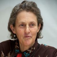 Temple Grandin profile photo