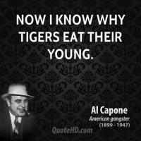 Tigers quote #1