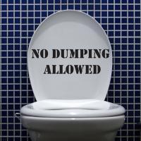 Toilets quote #1