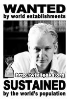 Wikileaks quote