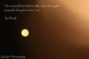 Yann Martel's quote